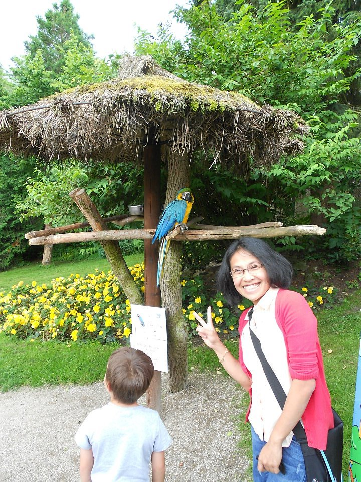 Vogelpark 2012