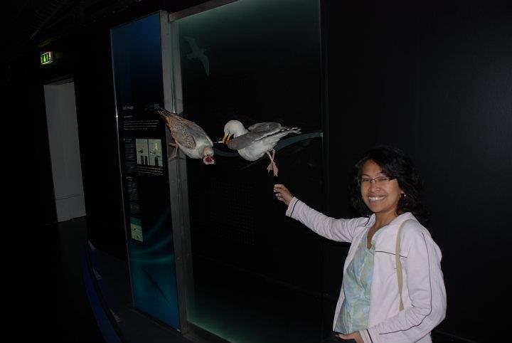 Hirtshals 2011 Oceanarium
